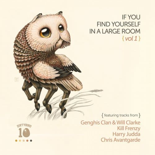 IF YOU FIND YOURSELF IN A LARGE ROOM VOL. 1