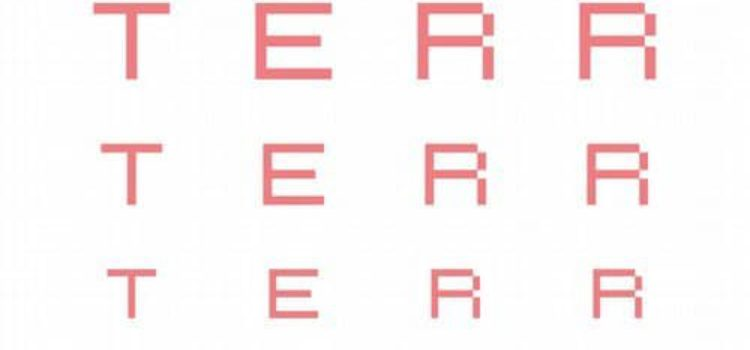 TERR – HAVE YOU EVER