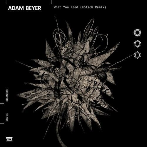 WHAT YOU NEED (KÖLSCH REMIX) – ADAM BEYER