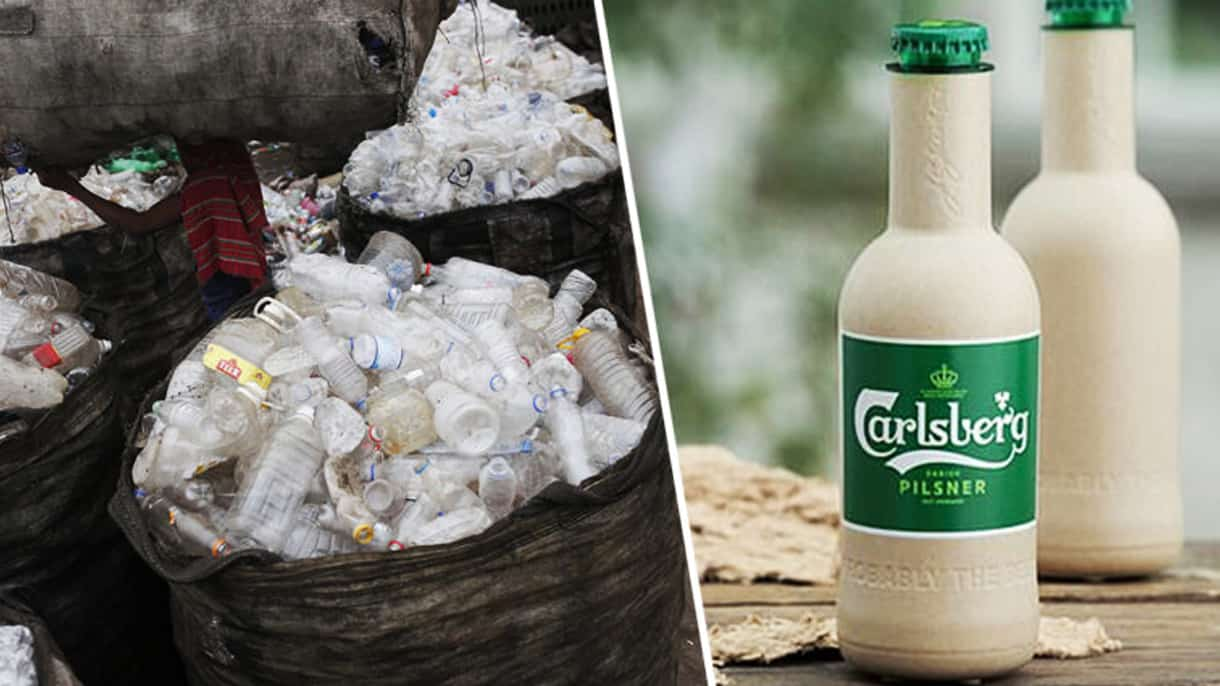 NEW PLANT – BASED BOTTLES BACKED BY COCA-COLA AND CARLSBERG WILL DEGRADE IN JUST A YEAR